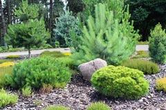 высокогорный сад Стоковые Фотографии RF