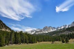 Высокогорный луг в долине Madriu-Perafita-Claror стоковая фотография rf