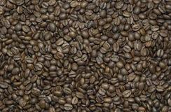 высокое качество кофе фасолей зажарило в духовке Стоковые Фотографии RF