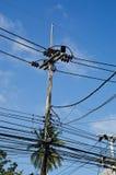 высокое напряжение кабеля Стоковая Фотография RF