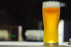 Высокорослое стекло светлого пива в винзаводе Стоковые Изображения RF