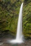 Высокорослый мирный водопад в Чили стоковые фото