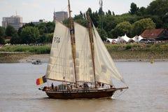 Высокорослая гонка корабля 2016, Антверпен Бельгия Стоковое фото RF
