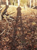 Высокорослая тень Стоковое Изображение