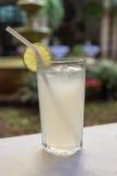 Высокорослое стекло свежего лимонада Стоковые Фото