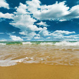 Высокорослые волны Стоковые Фото