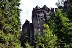 Высокорослые высокие утесы и серия деревьев в фотографии национального парка Стоковая Фотография RF
