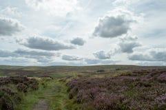 Высоты над падениями Bronte Стоковое Изображение RF