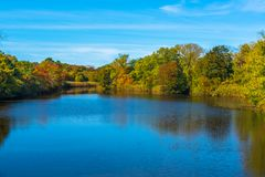 Высоты озера пруд развалины весной стоковое фото