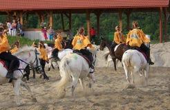 Выставка Венгрия лошади Стоковые Фотографии RF