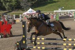 выставка всадника лошади скача Стоковая Фотография