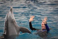 Выставка дельфина в Балтиморе, Мэриленде Стоковое Изображение