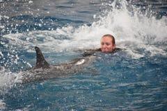 Выставка дельфина в Балтиморе, Мэриленде Стоковые Изображения
