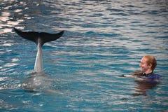 Выставка дельфина в Балтиморе, Мэриленде Стоковые Фото