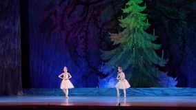 Выставка жемчугов балета сток-видео