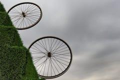 Выставка диаграмм в парке центра Heydar Aliyev Стоковые Фото