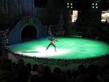 Выставка кататься на коньках льда праздника Стоковое фото RF