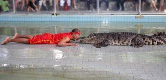 выставка крокодила стоковая фотография rf