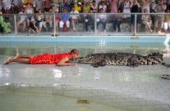 выставка крокодила стоковые фото