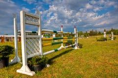 выставка лошади скача Стоковое Изображение RF