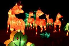 Выставка света оленей Стоковые Фото