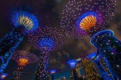 Выставка света рапсодии сада на супер роще дерева Стоковое Фото