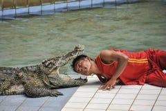 выставка Таиланд крокодила стоковая фотография rf