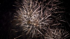 Выставка фейерверка pyrotechnic сток-видео