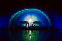 Выставка фонтана Roshen Стоковое фото RF