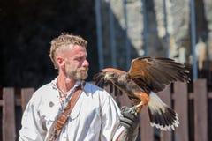 Выставка хищной птицы в средневековом замке бульона, Бельгии Стоковое Изображение