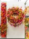 Выставка цветов 2017 RHS Челси ` S мира большинств престижная выставка цветов показывая самое лучшее в дизайне сада Стоковая Фотография