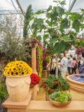 Выставка цветов 2017 RHS Челси ` S мира большинств престижная выставка цветов показывая самое лучшее в дизайне сада Стоковое Изображение RF