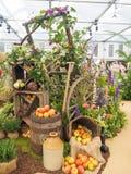 Выставка цветов 2017 RHS Челси ` S мира большинств престижная выставка цветов показывая самое лучшее в дизайне сада Стоковые Изображения RF