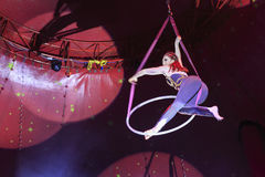 Выставка цирка Zyair потехи Стоковые Фотографии RF