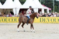 Выставка Dressage лошади Стоковые Фотографии RF
