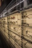 Выставочная витрина Eyewear вполне роскошных стекел в Кальяри, Sardegna в ноябре 2018 стоковые фото
