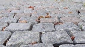 выстилка гранита предпосылки cobblestoned стоковое фото rf