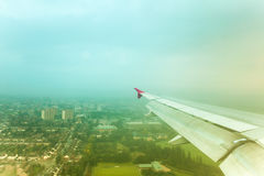 выстрогайте окно взгляда 1 полет s птицы Стоковые Изображения