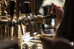 Выстучайте прочное пиво стоковые фотографии rf