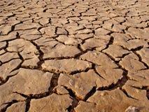 высушенная грязь Стоковое Изображение