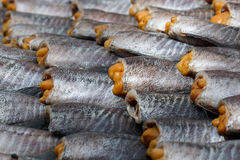 Высушенная еда, высушенная посоленная рыба damsel, тайская еда Стоковое Изображение