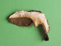 Высушенная еда гриба porcini Стоковая Фотография RF