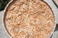 высушенная еда Стоковая Фотография RF