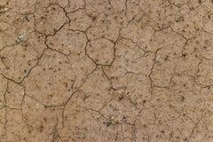 Высушенная и треснутая земная поверхность Стоковая Фотография