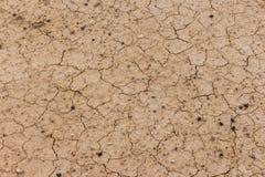 Высушенная и треснутая земная поверхность Стоковые Изображения