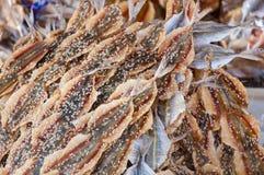 Высушенная куча рыб на рынке Стоковое Изображение