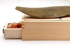 Высушенная пеламида Стоковые Фото