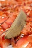 Высушенная пеламида Стоковое фото RF