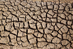 Высушенная почва глины рва полива в Albufera fields стоковое фото