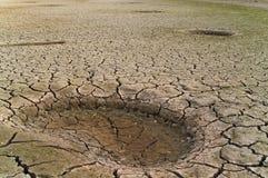Высушенная почва Стоковые Изображения